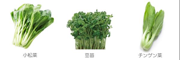 インコ 野菜 セキセイ
